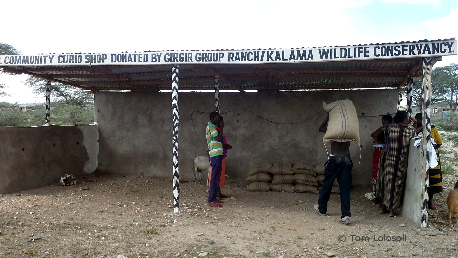 Aktueller Bericht von Tom Lolosoli vom 14.12.2015 zur Lage in Umoja