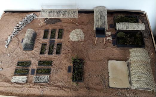 Oasis-Pilotprojekt - Baumaßnahmen 2018