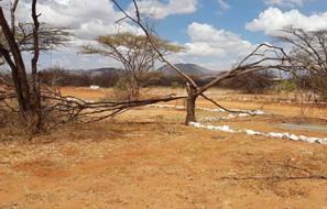 Dürre in Umoja